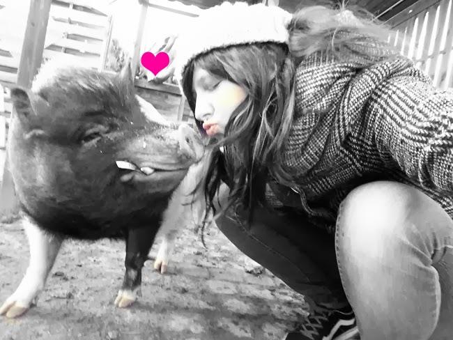 Schwein Bruno und ich