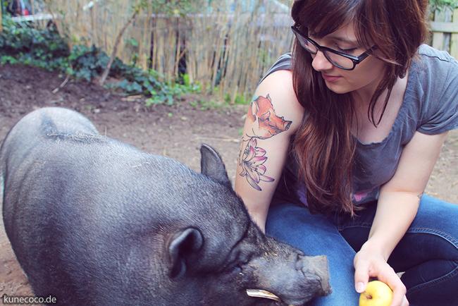 Schweinelovestory #14 ~ Schweineliebe unter der Haut
