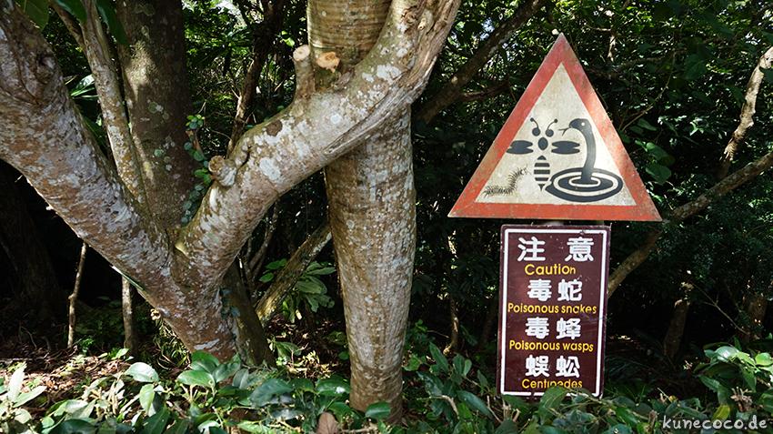 KuneCoco • Kenting Nationalpark, Taiwan • Warning