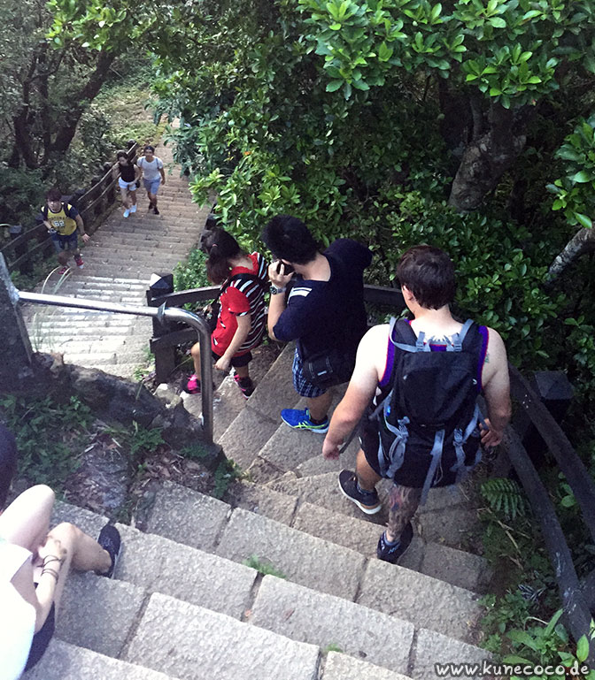 KuneCoco • Elephant Mountain, Taipei Taiwan • Hiking Trail