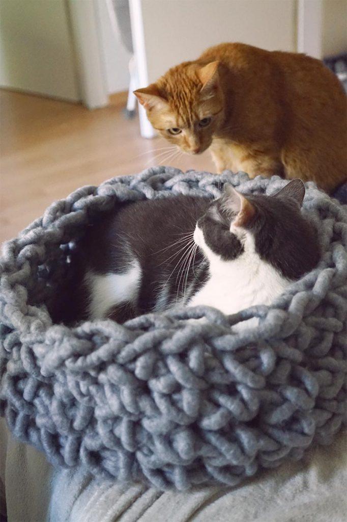 KuneCoco • Winterzeit ist Bastelzeit! • Katzenbett