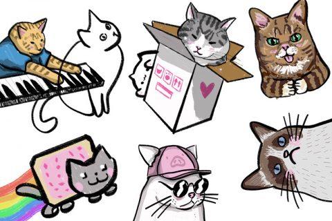 KuneCoco • Katzen, Memes und das Internet